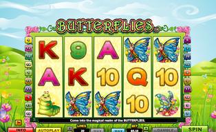 Butterflies20140825 31054 141t45j