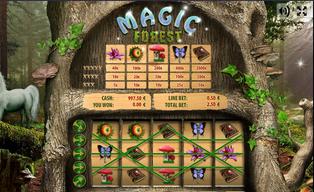 Magic forest20140825 31054 hxwdjw