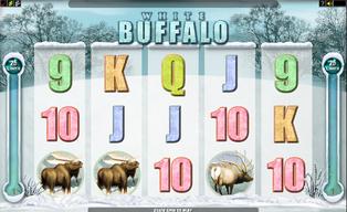 White buffalo20140825 31054 1p7ao7y
