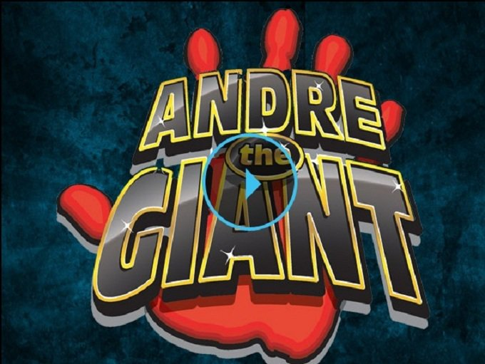 Andre120140825 31054 ecgfz2
