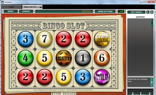Bingo slot1 2520140429 16648 cz70re