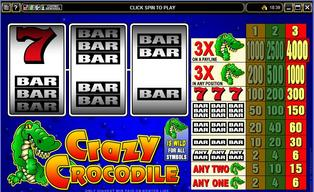 Crazy 20crocodile 20120140429 16648 10mxwzy