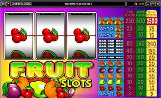 Fruit 20slots 20120140430 16648 f0h3ah