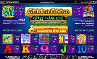 Golden 20goose 20crazy 20chameleons 20220140430 16648 181i5us